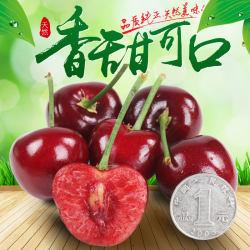 【预售】精品特级果 美早樱桃 有机认证 26-28mm 3斤装 烟台露天大樱桃 紫红色美早 脆甜多汁
